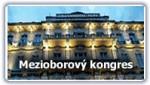 VI. mezioborový lékařský kongres České lékařské akademie EMOCE V MEDICÍNĚ IV. – Bolest napříč medicínou - Karlovy Vary, Grandhotel Pupp, 24. – 26. října 2013